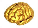 Gold Brain image