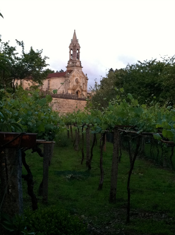 Church and Vines in Gondomar, Spain