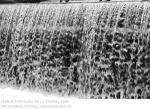 streams image